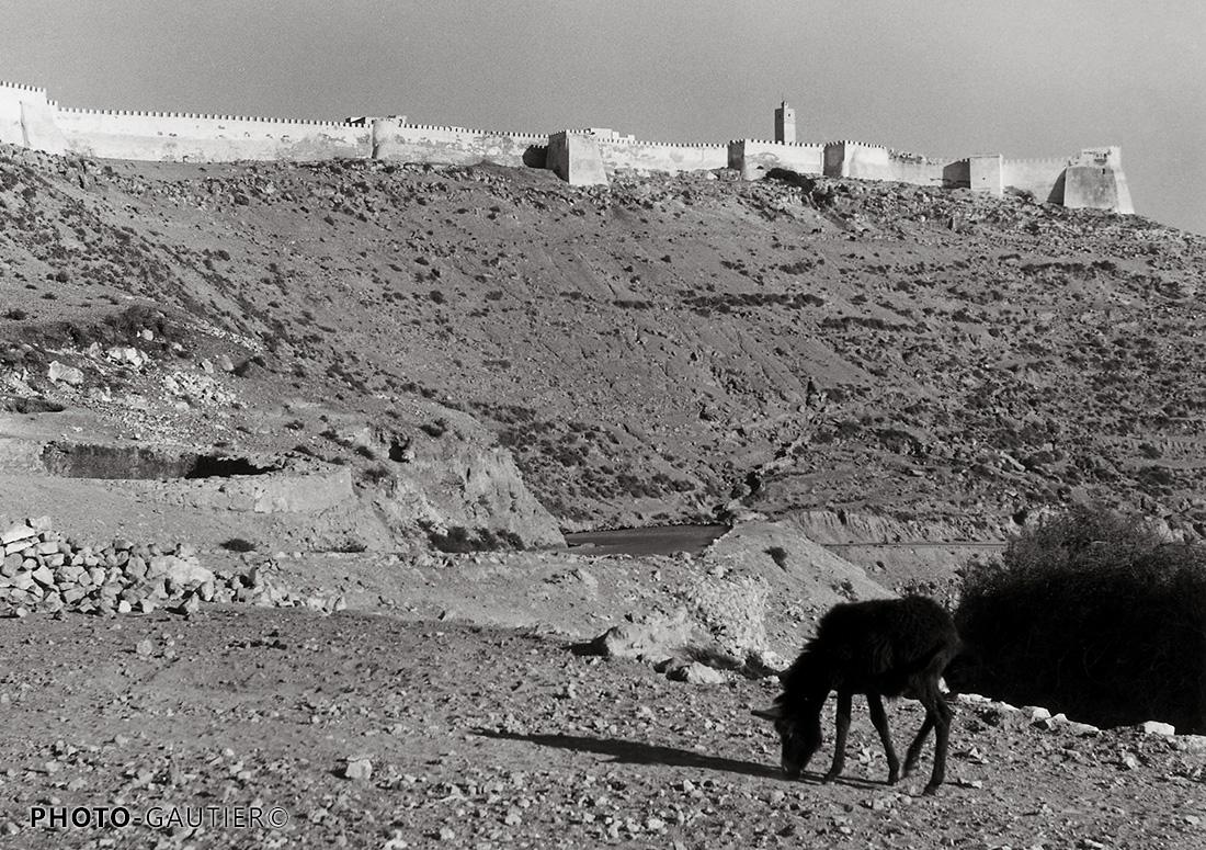 Agadir remparts forteresse piste horizon pierrailles