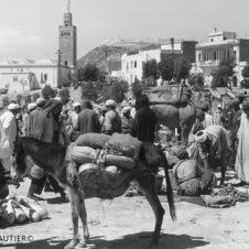 Agadir souk âne charge courge verte slaoui oignons foule minaret casbah soleil