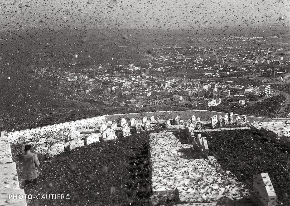 Agadir criquets sauterelles invasion insectes fléau huitième plaie infestation cimetière musulman tombes chaux photographe