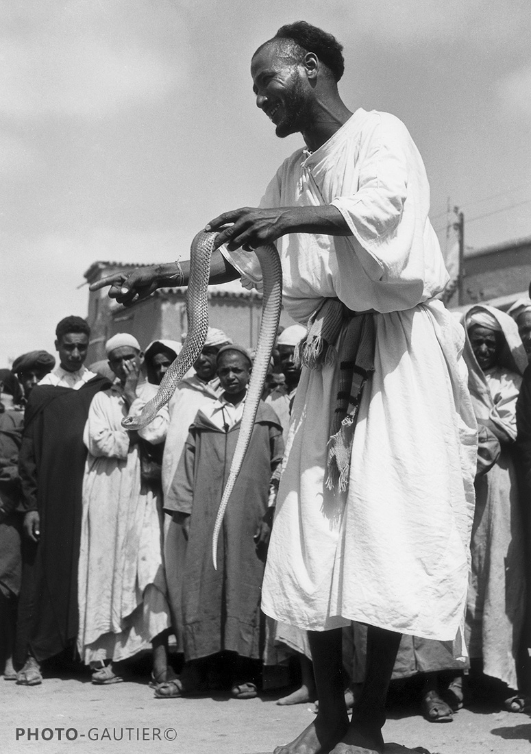 portrait Souss Taroudant public spectateurs debout hommes venin serpent
