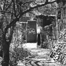 photo d'un chemin rural