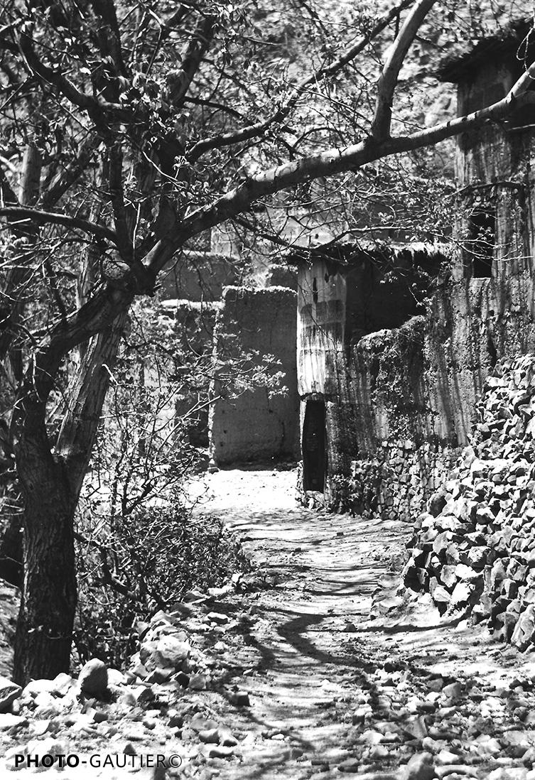 paysage rue maisons murs palmeraie village route descente