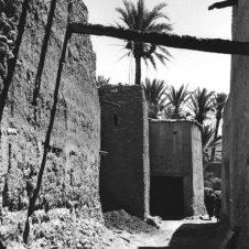 photo d'une ruelle déserte avec un palmier
