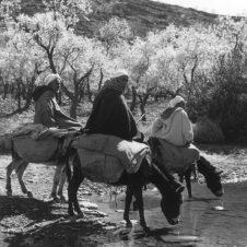 photo de trois hommes à dos d'âne s'abrevant dans une rivière