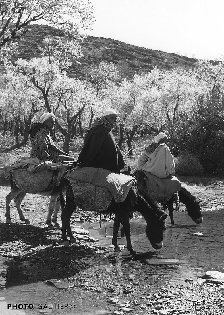 paysage traversée amandiers cavaliers abreuvoir halte cabas ânes paniers tressés djellabas