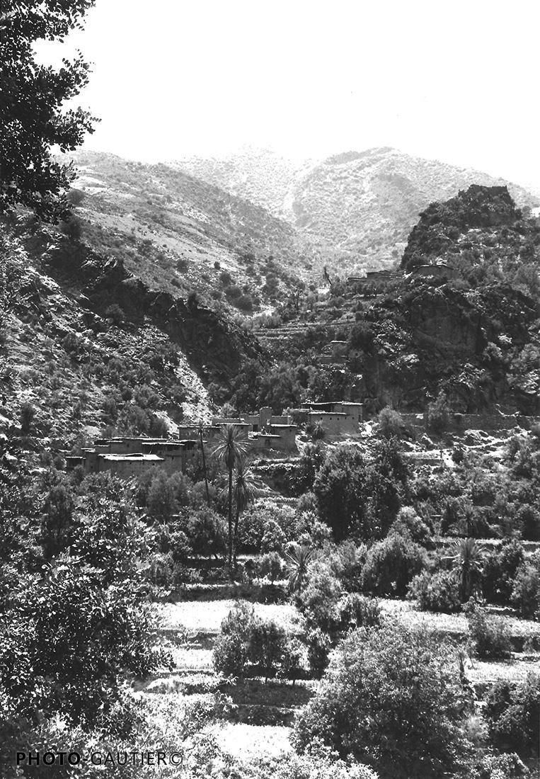 paysage rivière cours d' eau oliviers amandiers végétation cultures terrasse sérénité