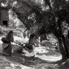 paysage avec des femmes qui ortent de l'eau dans un chemin