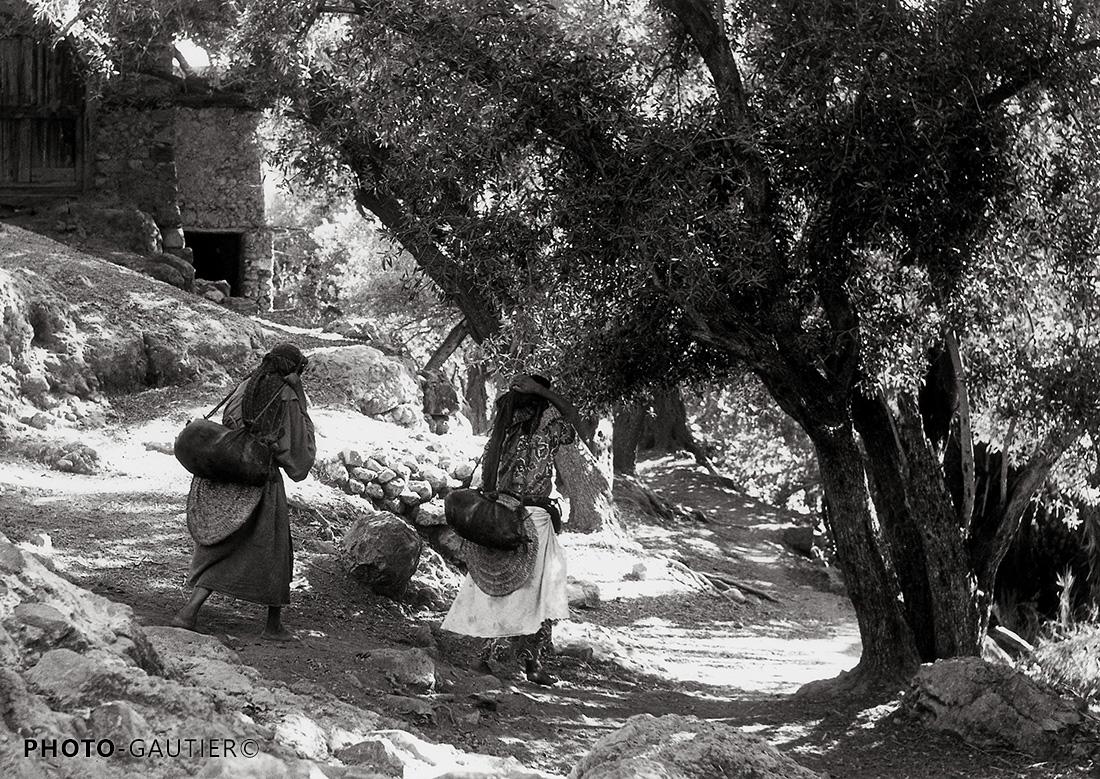 paysage femmes corvée d'eau descente chemin virage outres peau