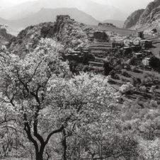 paysage de campagne marocaine