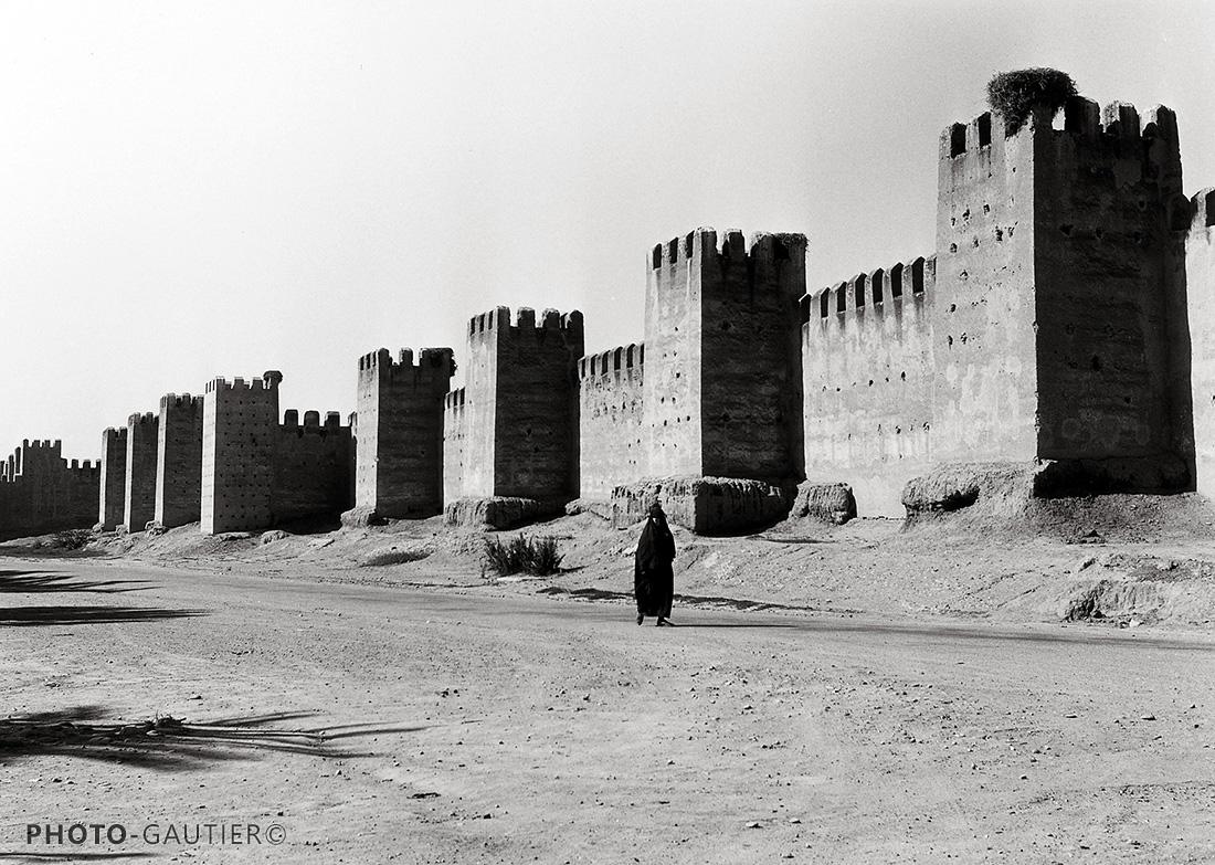 Souss Taroudant murailles forteresse nid cigogne créneaux crénelé seule