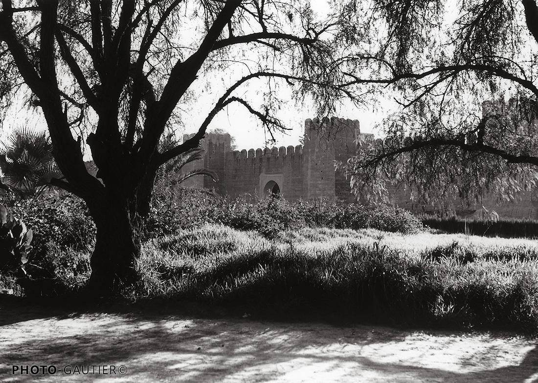 Souss et Taroudant murailles forteresse créneaux arbre route ombre