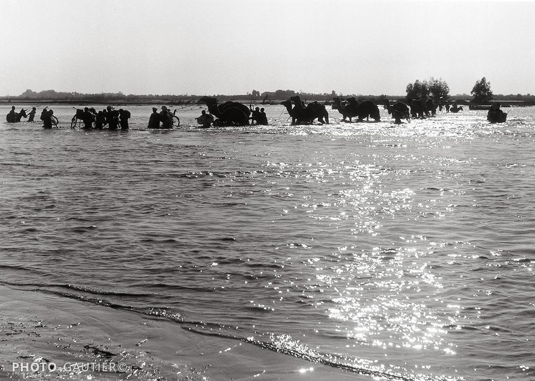 Souss et Taroudant fleuve traversée vélo dromadaires lumière rive inondation crue